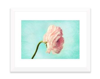 Pink Ranunculus Photography, Ranunculus Photo No.299, Fine Art Flower photography, Botanical Print, Romantic Prints, Pink & Mint Wall Art