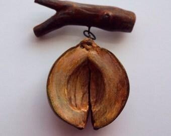 Hickory nut husk pin