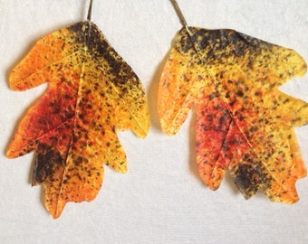 2 Big Autumn Leaves Fall Leafs Leaves Artificial leaves Craft Supplies Scrapbooking Leaves Yellow Orange
