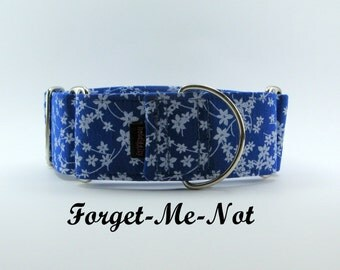 Forget-Me-Not Martingale Collar, Whippet Martingale, Martingale Dog Collar, Martingale Collar, Greyhound Collar, Forget Me Not Dog Collar