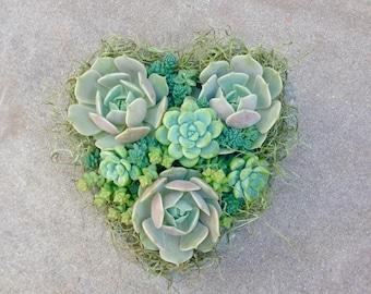 SUCCULENT HEART PLANTER, Mother's Day, Valentine's Day, Birthday, Get Well, Sympathy, Succulent Planter, Wedding, , Bridal Shower, Bridal