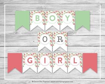 Mint and Coral Gender Reveal Banner - Printable Gender Reveal Banner - Coral Mint Gold Gender Reveal - Boy Or Girl Banner - SP132