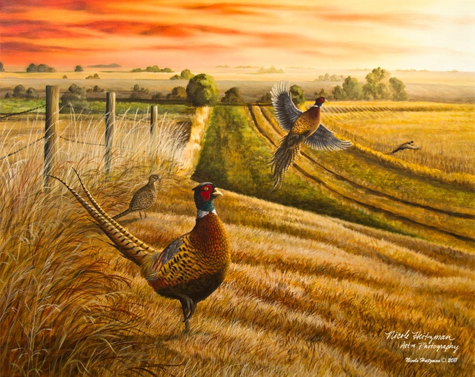 Pheasant Hunting Father's Day Gift Pheasant Painting Rooster Road Gift for Dad Ring-necked Pheasant Art Wildlife Print by Nicole Heitzman