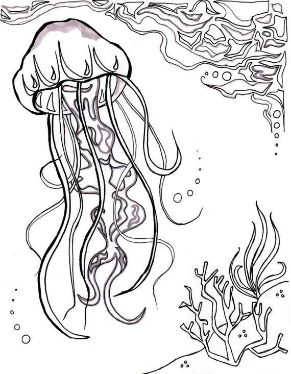 jellyfish ocean ocean coloring sheet aquatic art sea nautical coloring page