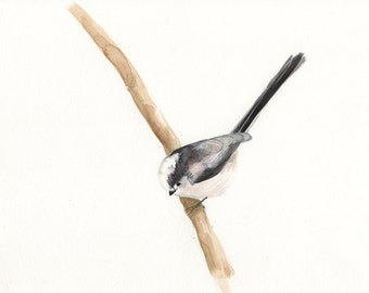 Long Tailed Tit Watercolour, Wildlife Print