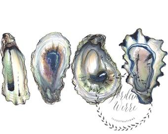 Oysters Shucked East Coast Beach Ocean Underwater Illustration Print