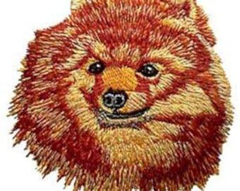 Pomeranian Embroidery Design 4x4 hoop
