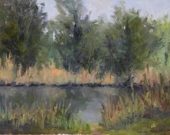 Spring Pond Scene OP4