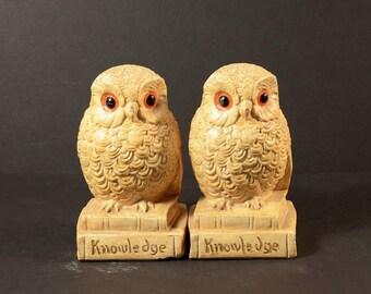 "Vintage Wise Owl Bookends, Glazed Ceramic Chalkware, Retro 70s Hippie Home Office Bookshelf Dorm Decor, Kitsch Owls ""Knowledge"",  Set of 2"