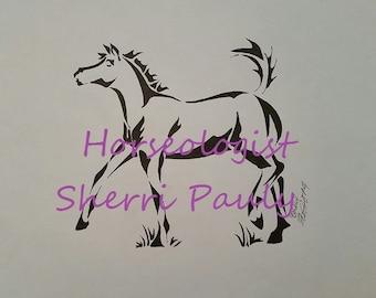 Foal #1 - Horseologist.com