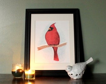 Print: Cardinal Watercolor