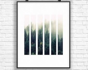 Forest Print, Tree Wall Art, Forest Photography, Printable Art, Rectangle Art, Forest Decor, Home Decor Art, Geometric Art, Green Art