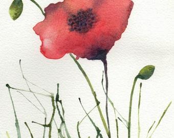 Watercolor print poppies