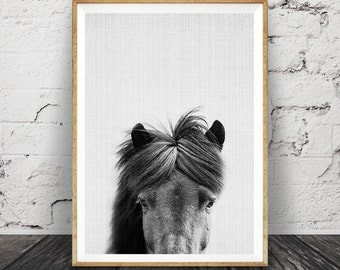 Horse Art, Black and White Horse Wall Art Print, Photography, Modern Minimalist, Large Art Poster, Printable Download, Horse Photo