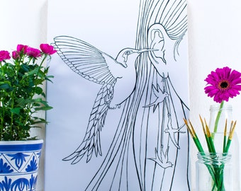 Hummingbird Artist Colouring Canvas