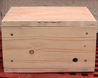 Handmade wooden Bee Box - various colours available