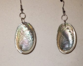 Jewelry/ Earrings/ abalone shell / handmade jewelry / seashell earrings / #shellartnmore