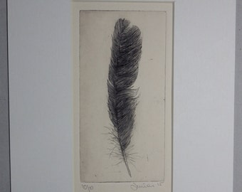Feather 6, Drypoint Etching, Limited Edition of 10, 2015 - Feathers Serie