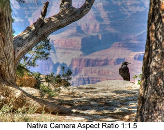 A Bird's View of the Canyon: Landscape art photography prints for home or office wall decor.