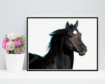 Horse Print, Printable Art, Black And White Horse, Horse Photo,  digital Download,  Wall Decor, Home Decor, Gallery Wall