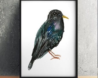 Nursery print Starling poster Bird print Watercolor art ACW534