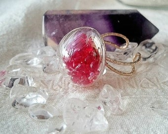 ★sale★ Finger ring of the glass dome 【Evidence that is alive】