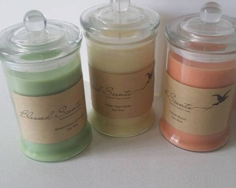 3x Medium Fiesta Scented Soy Candles