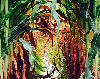 Reflections of Corn