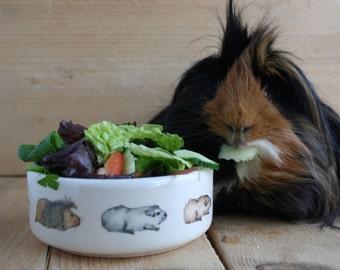 Guinea Pig Food Pet Bowl - Guinea Pig Train Design