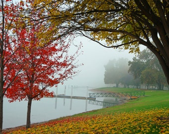 Fall Trees in the Mist Art Poster