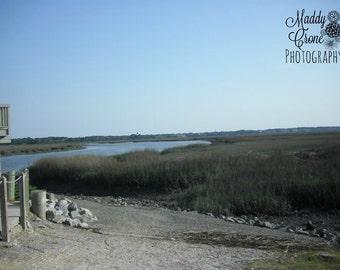 Beach Photograph, Marsh Photograph,  4 x 6