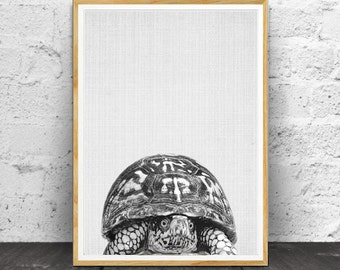 Turtle Print, Nursery Animals, Nursery Print, Animal Print, Nursery Wall Art, Nursery Decor, Nursery Animal Print, Nursery Printable, Animal