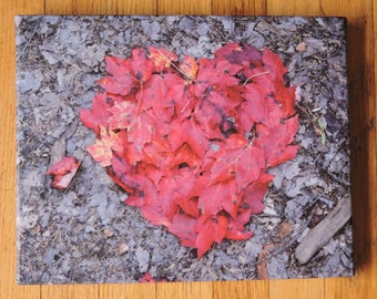 Leaf Heart - Photo on canvas