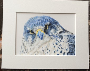 Gyrfalcon Original Acrylic Painting, Raptor Art, Falcon art, Bird of Prey art, Falcon painting, large bird art, bird home decor, blue bird