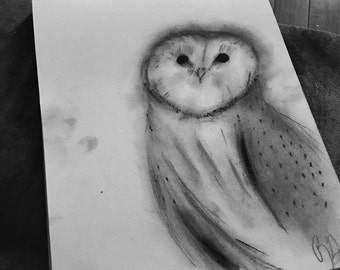 Charcoal Snowy Owl