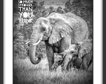 African elephant family, African Safari art, Nature photography, Animal decor, Animals, Animal print, African animals, South Africa, Quote