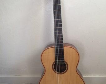 Gianinni guitar