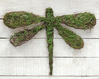 DragonFly-Angel Vine-Moss-Great for Spring