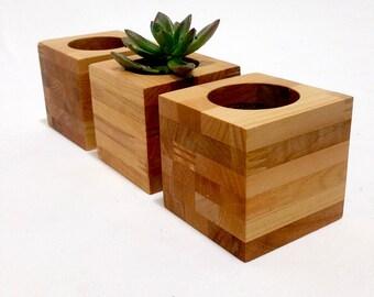 Reclaimed Wood Succulent Planters, Modern Succulent Plant Cubes, Natural Wood Planter
