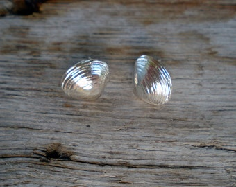 Medium Clamshell Post Earrings