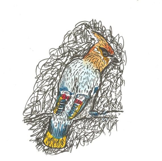 Original drawing of a Waxwing bird