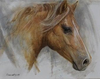 """Original painting in oil 14 """"x 18"""" / horse: Portrait of Tessie"""