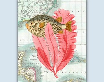 SeaFan Art, Sea Fan porcupinefish Collage, Carribean map, Nautical Art, globefish, coastal Decor, Bathroom Decor, Nursery Art, Coastal Print