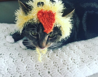 Chick Cat hat