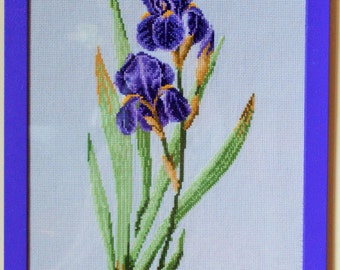 Handmade cross stitch Embroidery ireos framed