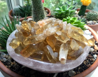 Two (2) Small Natural Raw Citrine Points from the African Congo | Third Chakra | Golden Citrine | Unheated Citrine | Joyful Energy T475L