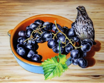 Still life with grapes and bird