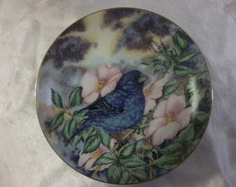 Indigo Bunting plate - Songbird of the South collection