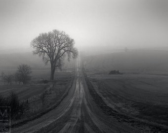 Rural Fog Photo Prints - Foggy Path Photo - Foggy Road Photo - Black and White Fog Photo