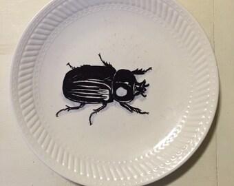 Hand-drawn beetle plate